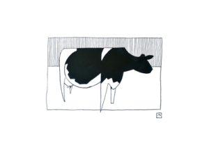 Cow III